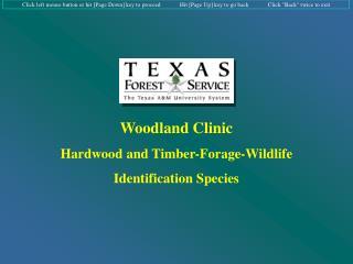 Woodland Clinic Hardwood and Timber-Forage-Wildlife Identification Species