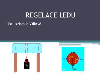 REGELACE LEDU