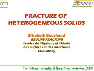 Elisabeth Bouchaud GROUPE FRACTURE S ervice de  P hysique et  C himie