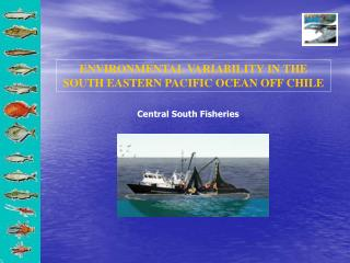 ENVIRONMENTAL VARIABILITY IN THE SOUTH EASTERN PACIFIC OCEAN OFF CHILE