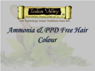 Ammoina & PPD Free Hair Colour @ 9873 18 1111