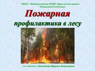 МБОУ «Поваркасинская ООШ» Цивильского района Чувашской Республики