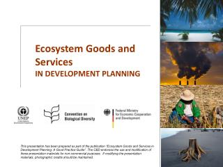 Ecosystem Goods and Services IN DEVELOPMENT PLANNING