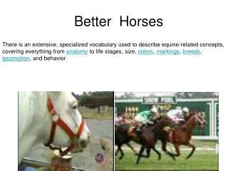 Better  Horses
