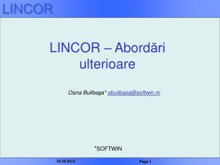 LINCOR – Abord ări  ulterioare