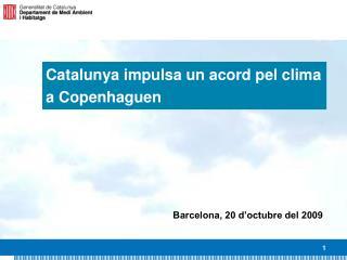 Catalunya impulsa un acord pel clima a Copenhaguen