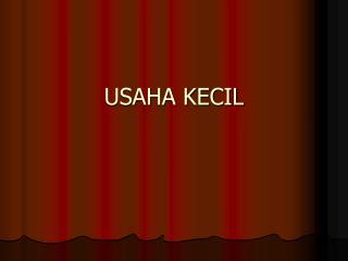USAHA KECIL