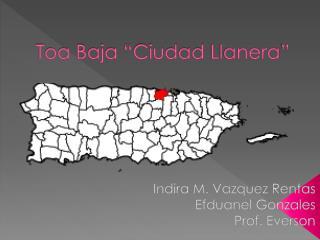 """Toa Baja """"Ciudad  Llanera """""""