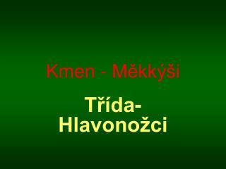 Kmen - Měkkýši