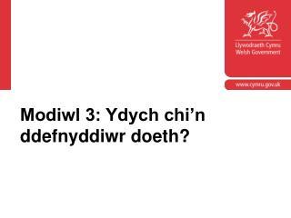 Modiwl 3: Ydych chi'n ddefnyddiwr doeth?