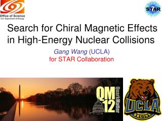 Search for  Chiral Magnetic Effects in High-Energy Nuclear Collisions