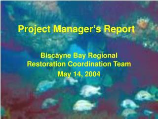Project Manager s Report