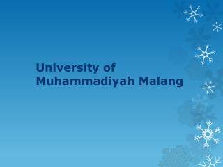 University of Muhammadiyah Malang