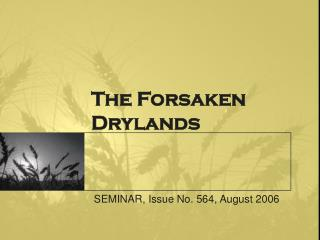 The Forsaken Drylands