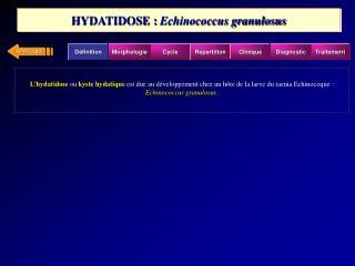 L hydatidose ou kyste hydatique est due au d veloppement chez un h te de la larve du taenia Echinocoque : Echinococcus g