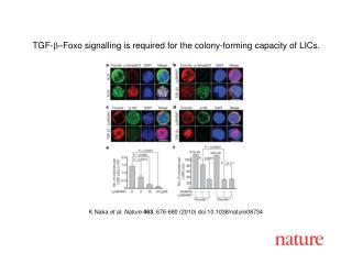 K Naka  et al. Nature 463 , 676-680 (2010) doi:10.1038/nature08734