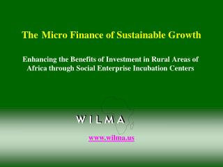 The Micro Finance of Sustainable Growth