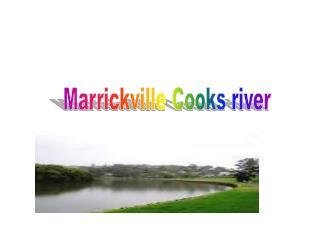 Marrickville Cooks river