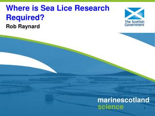 Where is Sea Lice Research Required?