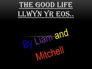 THE GOOD LIFE  Llwyn yr eos..