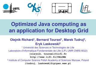 Optimized Java computing as an application for Desktop Grid
