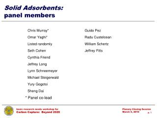 Solid Adsorbents: panel members