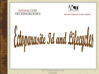 Ectoparasite Id and Lifecycles