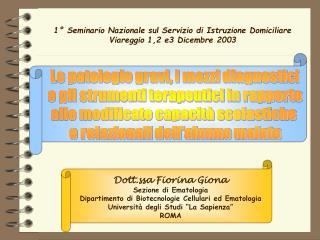 1  Seminario Nazionale sul Servizio di Istruzione Domiciliare Viareggio 1,2 e3 Dicembre 2003