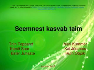 Triin TeppandMari Kummer Kersti Saar Kai  Jõemets Ester JuhasteRuth Ööpik Jaanuar 2013