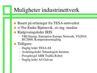 Muligheter industrinettverk