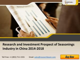 China Investment Prospect of Seasonings Industry 2014-2018