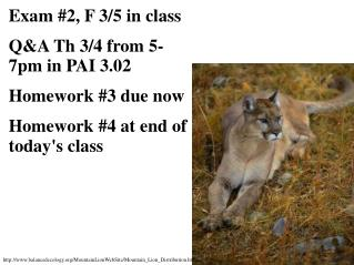 Exam #2, F 3/5 in class Q&A Th 3/4 from 5-7pm in PAI 3.02 Homework #3 due now