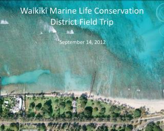 Waikīkī  Marine Life Conservation District Field Trip