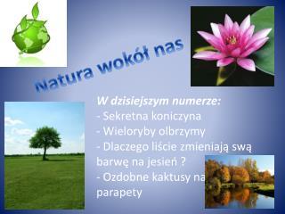 Natura wokół nas