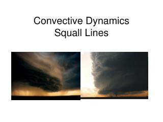 Convective Dynamics Squall Lines