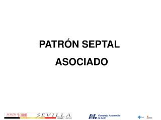 PATRÓN SEPTAL       ASOCIADO