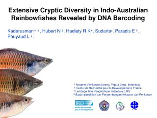 Extensive Cryptic Diversity in Indo-Australian Rainbowfishes Revealed by DNA Barcoding