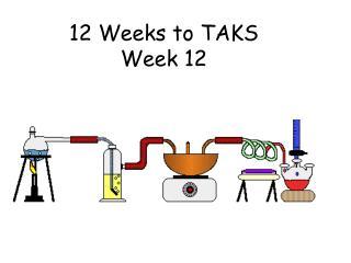 12 Weeks to TAKS Week 12