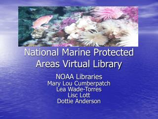 National Marine Protected Areas Virtual Library