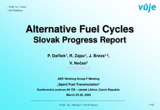Alternative Fuel Cycles Slovak Progress Report