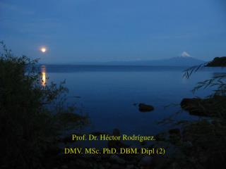 Prof. Dr. Héctor Rodríguez.  DMV. MSc. PhD. DBM. Dipl (2)