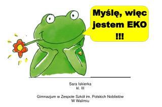 Sara Iskierka  kl. III  Gimnazjum w Zespole Szkół im. Polskich Noblistów W Walimiu