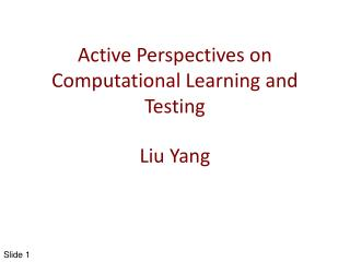 Active Perspectives on Computational Learning and  Testing