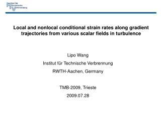 Lipo Wang Institut für Technische Verbrennung RWTH-Aachen, Germany TMB-2009, Trieste 2009.07.28