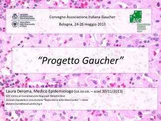 """""""Progetto Gaucher"""""""