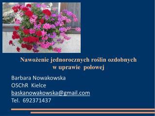 Nawożenie jednorocznych roślin ozdobnych w uprawie  polowej