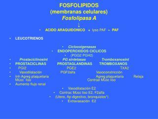 FOSFOLIPIDOS  (membranas celulares) Fosfolipasa A ↓