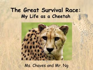 The Great Survival Race: My Life as a Cheetah