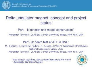 Delta undulator magnet: concept and project status