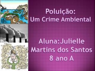 Poluição: Um Crime Ambiental
